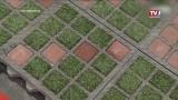 Energiesparmesse - TTE-ÖKO-Bodensysteme bei Zahrer
