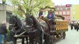 535 Jahre Rieder Pferdemarkt
