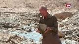 Fossilienmann Ferdinand Estermann - Im Gschliefgraben wird er fündig
