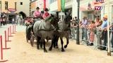 Der 115. Pferdemarkt in Vöcklabruck