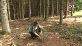 Landjugend Vöcklabruck setzt Bäume und schafft Lebensräume
