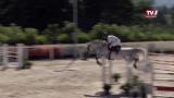 OÖ Jumping Tour Gschwandt