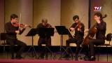 Rising Stars: Quatuor Van Kuijk bei den Salzkammergut Festwochen