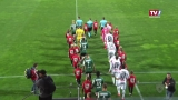 SV Guntamatic Ried vs. FC Juniors OÖ