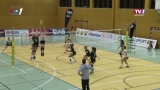 ASKÖ Linz-Steg vs. SG Prinz Brunnenbau Volleys