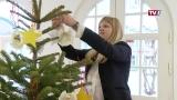 Der Altmünsterer Weihnachts-wunschbaum