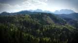 Mit Wald und Holz zur Modellregion