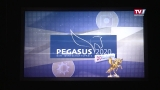 Pegasus 2020