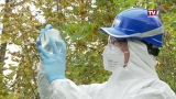 Multiresistente Keime als Gefahr für die Menschheit