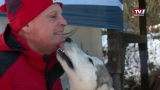 Weltmeisterliches Training mit 10 Huskys