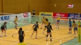 Playoff-Viertelfinale: ASKÖ Steelvolleys Linz/Steg vs. VC Tirol