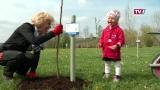 Geburtenwald in Aspach wächst und wächst