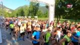 Der Traunsee-Halbmarathon 2021