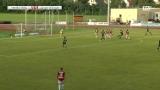 FB: Regionalliga: WSC Hertha Wels vs. Junge Wikinger Ried