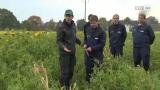 LWS Burgkirchen - Die Schule für den ländlichen Raum