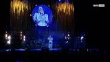Tina Turner Konzert Brucknerhaus