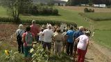Kulinarik und Unterhaltung für die ganze Familie - der Sauwald-Erdäpfelkirtag in St. Aegidi