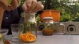 Die Ringelblume - ein Wundermittel aus der Natur
