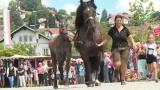 Pferdemarkt in Natternbach