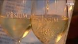 Vinum Traun - eine der ältesten Weinveranstaltungen