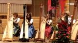 40 Jahre OÖ Landesmusikschulen