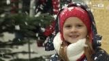 Vorweihnachtliches Flair beim Eferdinger Schmiedstraßenfest