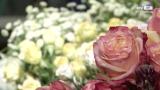 Blumen kreativ in Szene setzen