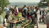 Frühlingsfest der Landwirtschaft - LWBFS Waizenkirchen