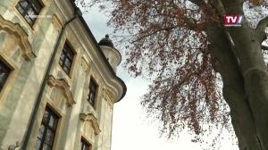 Kulturpark - Brigitte Brunner