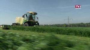 EU Agrarkürzungen