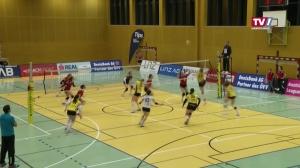 ASKÖ Linz-Steg vs. PSV Volleyballgemeinschaft Salzburg