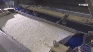 Lenzing AG investiert über 100 Millionen in die Zellstoffproduktion