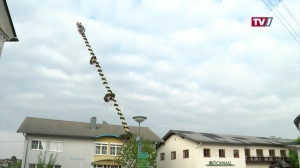 25 Meter Maibaum für Neukirchen/V.