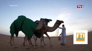 Abu Dhabi – Die Stadt der Superlative!