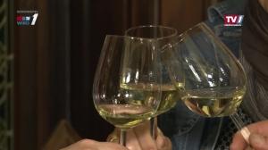 Präsentation Gmundner Wein