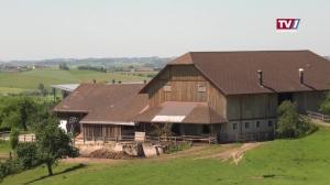 Die Landwirtschaft als Klimasünder?