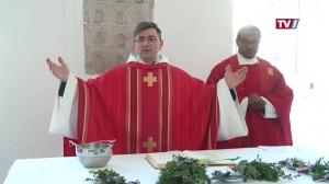 Feier der Palmsonntags-Liturgie