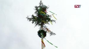 Der Maibaum der Familie Fischer in St. Marienkirchen/S.