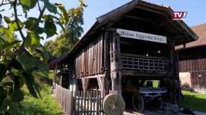 Neue Fischaufstiegshilfe bei Furthmühle