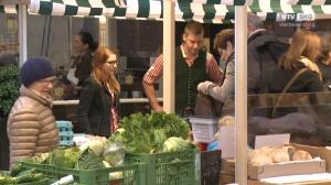Herd frei in der Marktküche im SEP