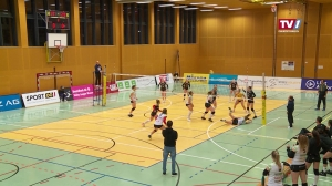 Steelvolleys Linz Steg – UVC Graz