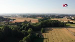 Agrarausblick – 2021 ist das Jahr der agrarpolitischen Entscheidungen.