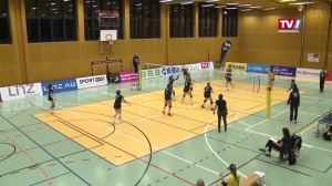 STEELVOLLEYS Linz/Steg vs. SG VB NÖ Sokol/Post