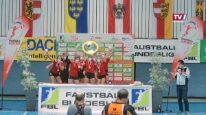 Finale in der Faustball Bundesliga