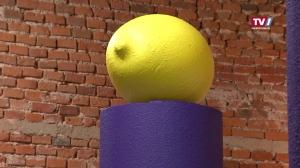 Spiel mit Farbigkeit, Fläche und Volumen