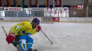 1. Österreichische Para Eishockey Staatsmeisterschaft