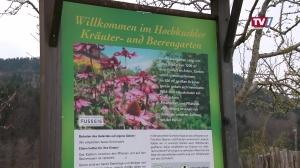 Grüner Daumen & schwarzes Gold - So gelingt's im Kräuter- und Gemüsegarten
