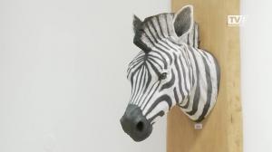 Stadt Gmunden eröffnet einen Keramikladen