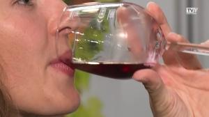 Wein und Kulinarik in Attnang- Puchheim