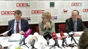 Hummer präsentiert Reformpaket der WKO